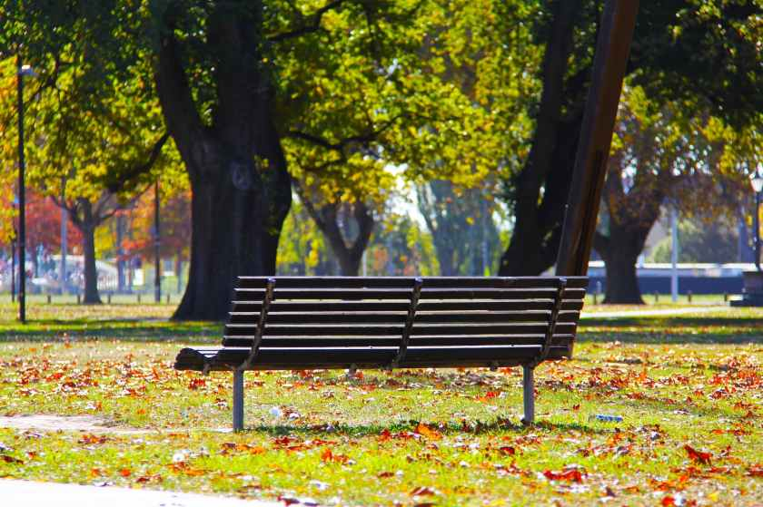 bench-blue-sky-city-160934.jpeg